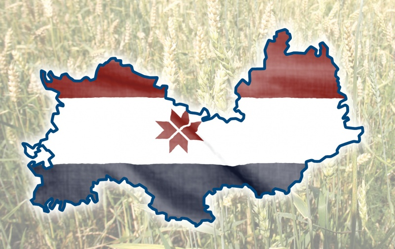 Рейтинг ВШЭ: Мордовия в числе десяти лучших регионов по инновационному развитию