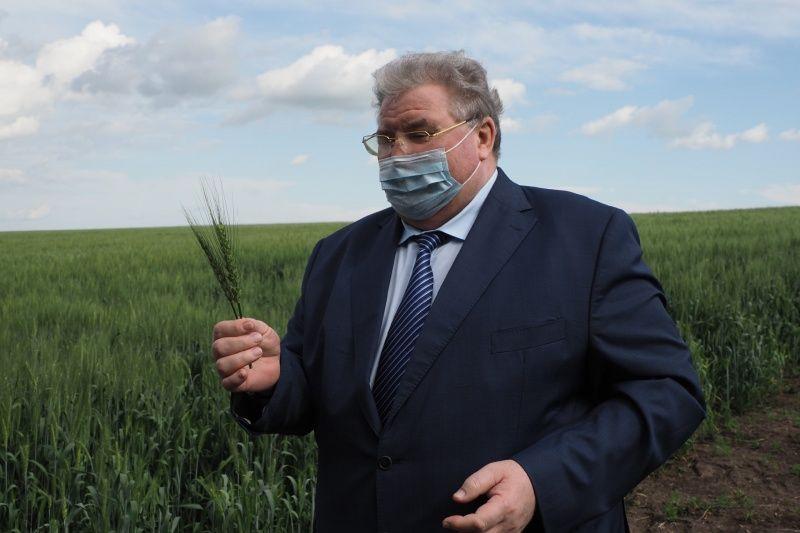 Глава Мордовии Владимир Волков: «Работа растениеводов республики - это мощь, мировой уровень!»